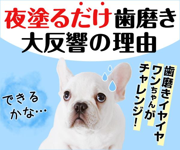 【AD】愛犬のお口をキレイに